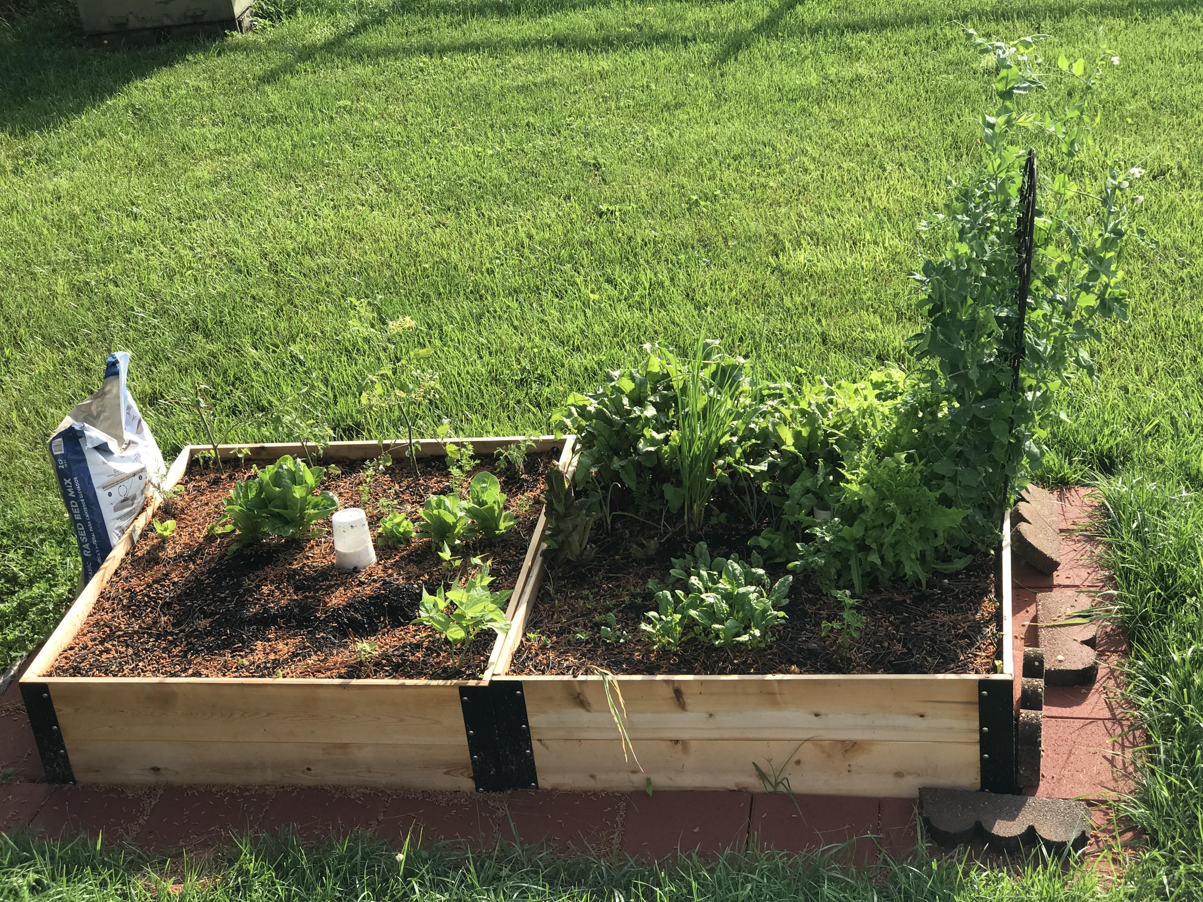 Picture of: Raised Garden Bed 4 X 4 X 14 Aaron S Homestead