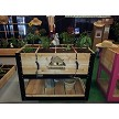 Black Elevated Garden Planter Box with matching tool hooks, bottom shelf and planting grid