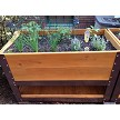 "Bottom Shelf on a Brown 30"" high Elevated Garden Planter Box"